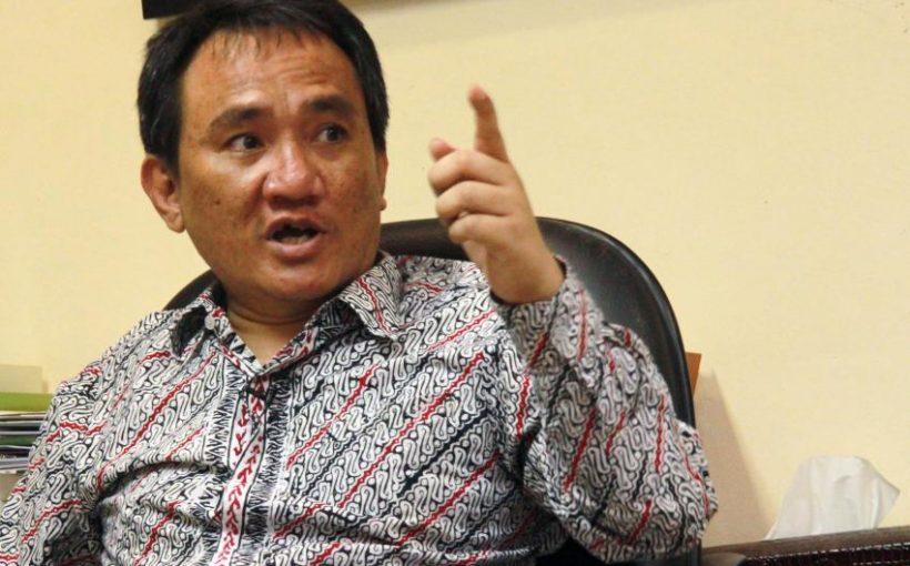 Wakil Sekretaris Jenderal Partai Demokrat, Andi Arief